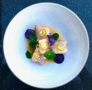 baja kanpachi crudo, rosehip and lemon verbena chilled tea, pickled kumquat, purple causa, vegetable textures