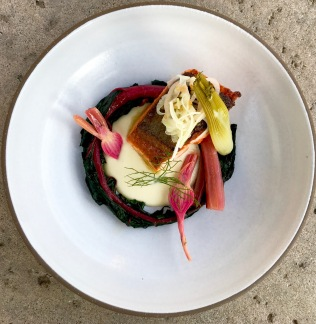crisped king salmon, fennel crema, preserved chioggia, swiss chard, mustard fennel relish, fennel fondant