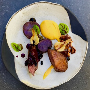 liberty duck, musque de provence creme, purple majesty, chanterelle, huckleberry
