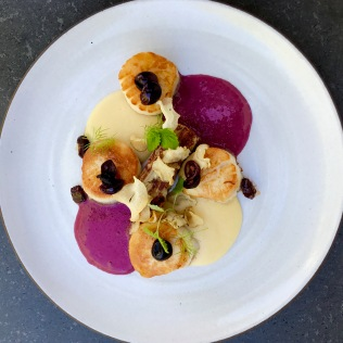 Seared day boat scallops, sunchoke pave and soubise, venus grape pickled and frothy